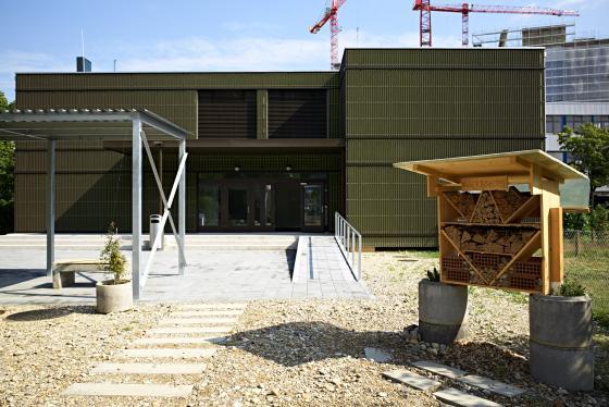 Der Weg zum neugebauten Pavillon