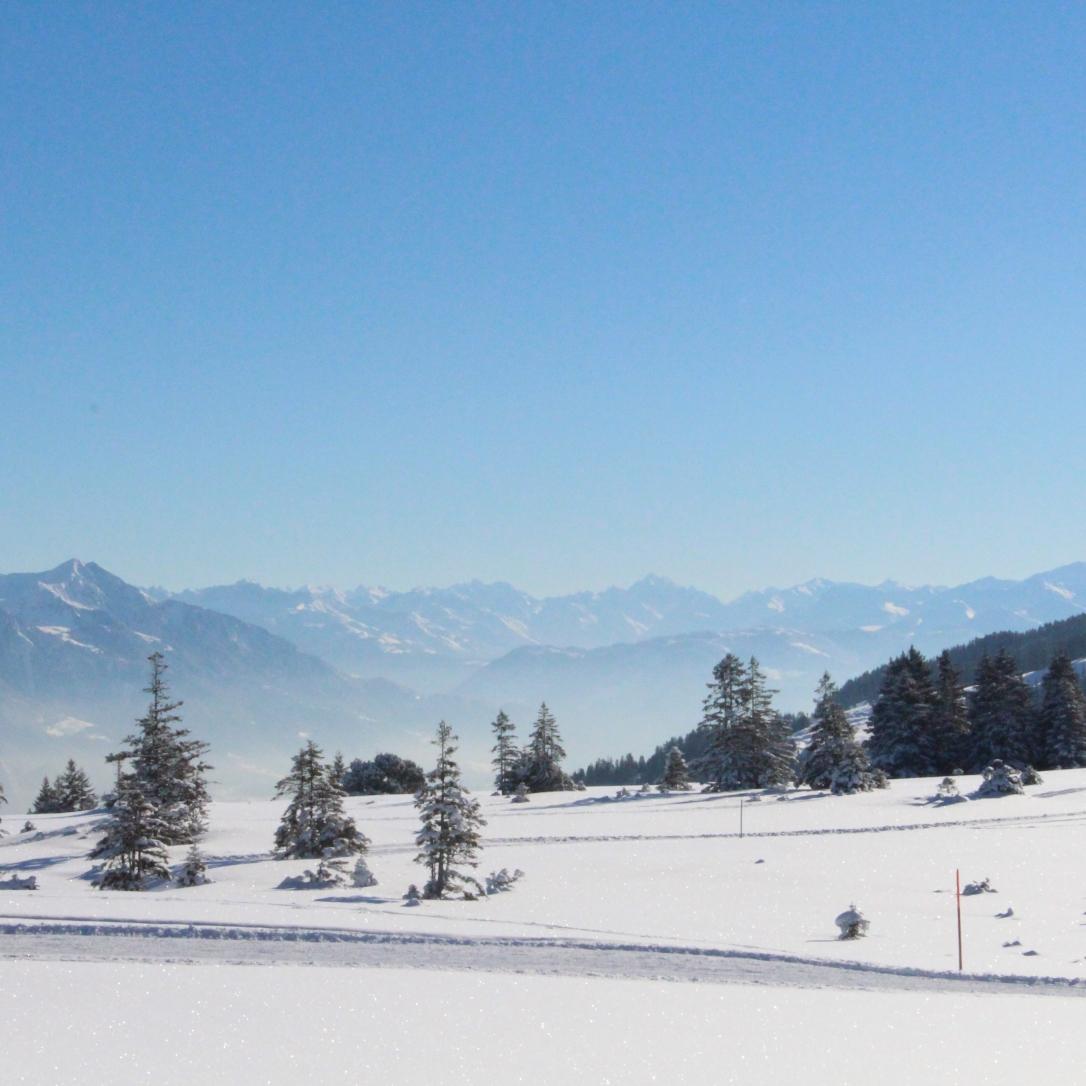 lucie-anderruti-skitag-2016-011