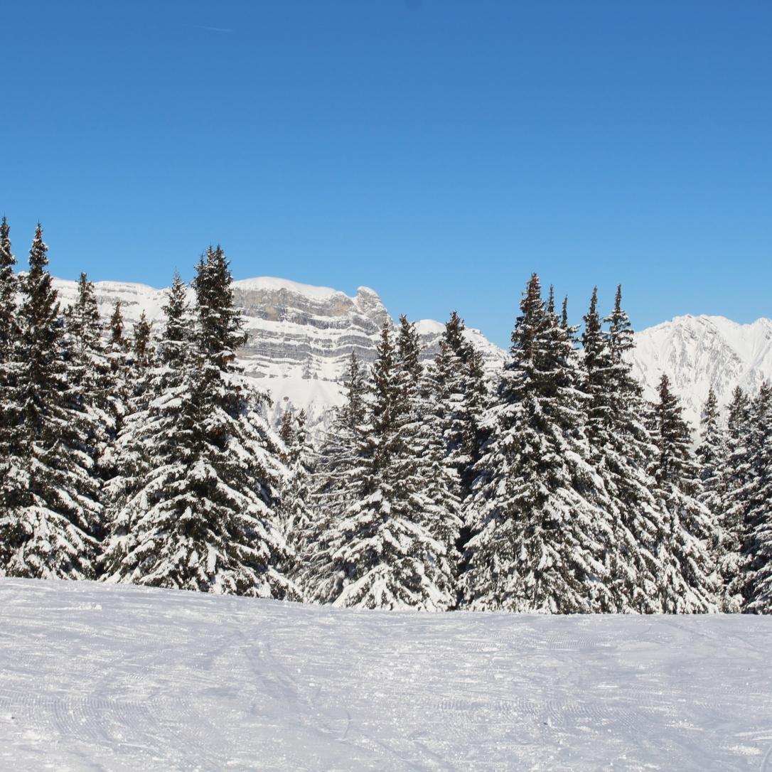 lucie-anderruti-skitag-2016-041