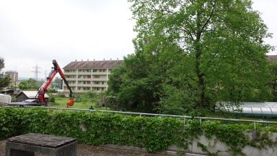 Vor dem Bau des Pavillons, Blick vom Eingangsbereich in Richtung Familiengärten