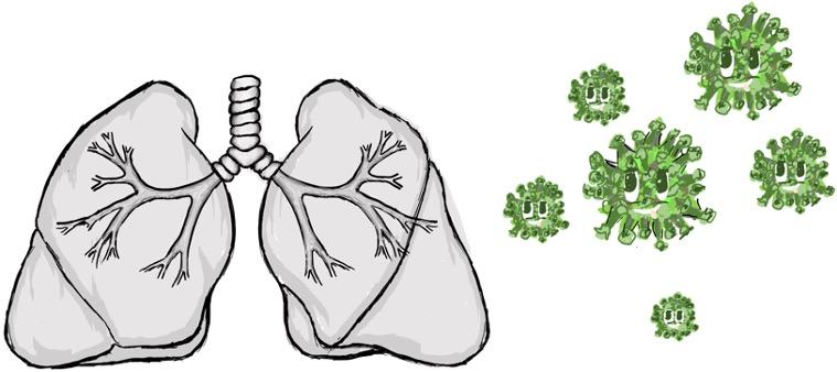 Lunge, von Samuele Duso